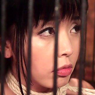 Petite Asiatisk Lesbisk Anal Pult Jente Riser Jente
